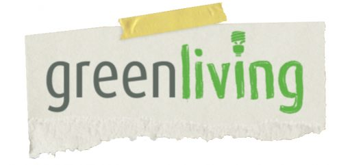 Reusable Bags And Other Simple Green Living Steps