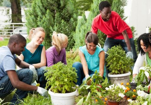 4 Ideas For Eco Friendly Projects To Get Started In Your Community