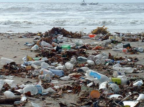 the oceans pollution problem essay Free coursework on ocean pollution in the third world from essayukcom, the uk essays company for essay, dissertation and coursework writing.