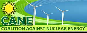 nuclear free energy south africa cane